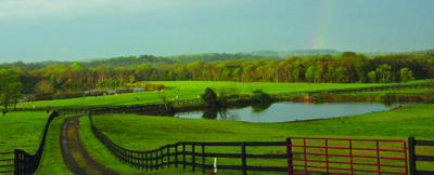 Farm property with a pond, black fencing, fall trees in background with a rainbow