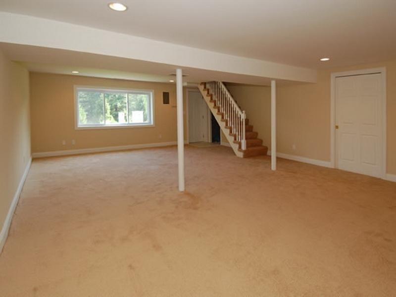 Finishing basement fauquier county va for Images of finished basements