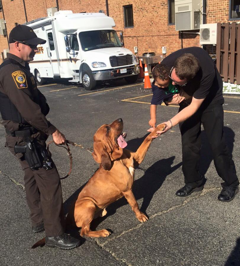 "K9 ""Judge"" greets a junior citizen"