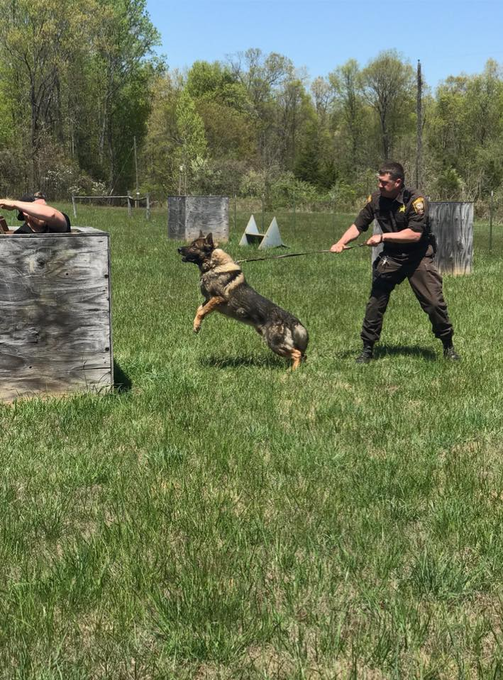 MDS Harner and K9 Ex